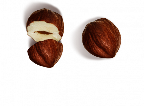 Our Hazelnuts | Nutella